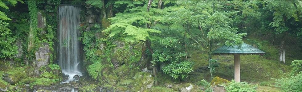 8月の見どころは翠滝